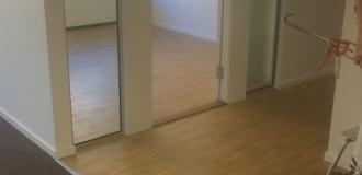 Lackad ek i kontorsmiljö (1)